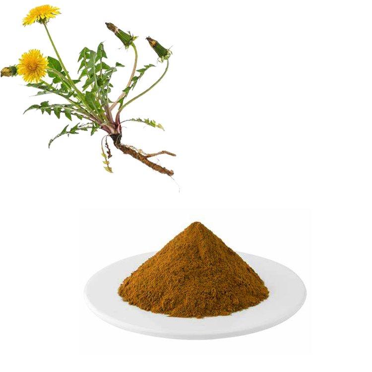 Dandelion Root Extract 10:1 TLC