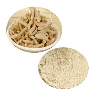 Ophiopogon Root Stright Powder TLC