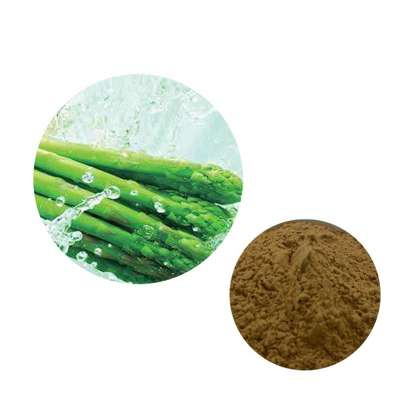Asparagus Straight Powder TLC