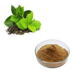 Green Tea Extract 10:1 TLC