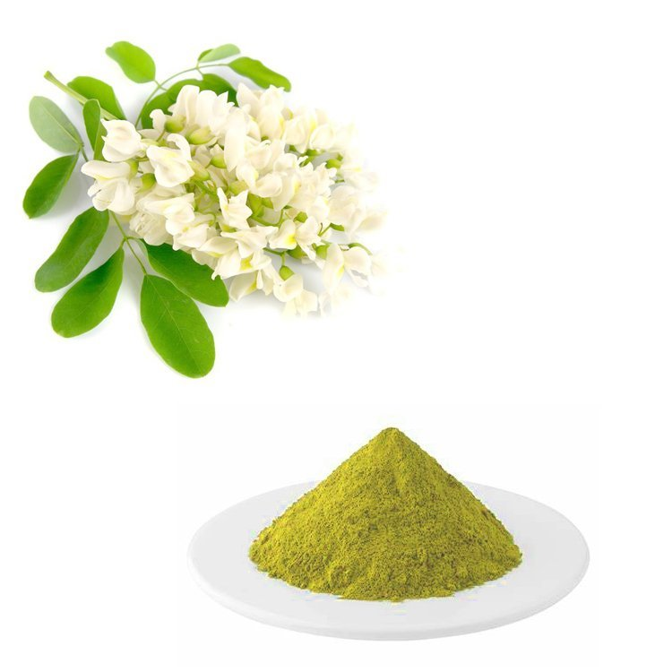 Sophora Japonica Extract Anhydrous Quercetin 95% HPLC