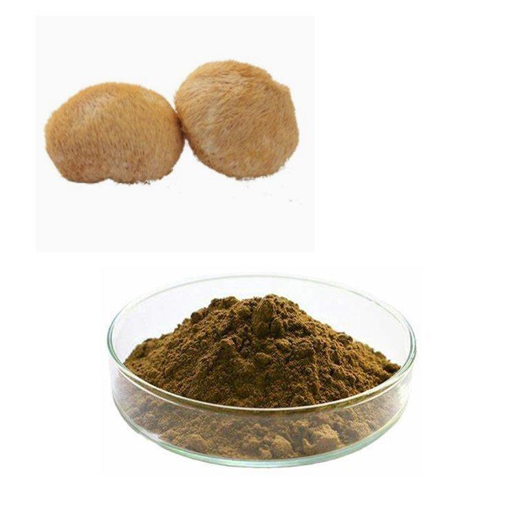 Lion's Mane Mushroom Extract 10:1 TLC
