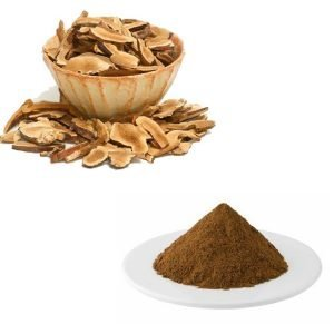 Astragalus Extract Astragalosides 0.5% HPLC