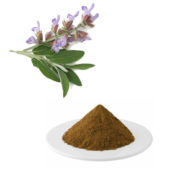 Clary Sage Extract Carnosic Acid 60% HPLC
