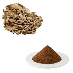 Maitake Mushroom Straight Powder TLC