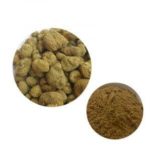 Rhizoma Corydalis Extract 98% Tetrahydropalmatine HPLC