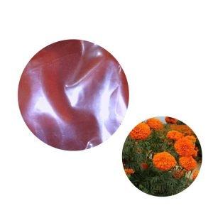 Marigold Extract Lutein Oil 20% HPLC