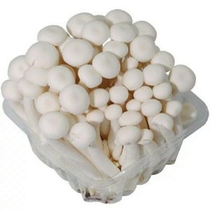 White Mushroom Extract Polysaccharides 30% UV